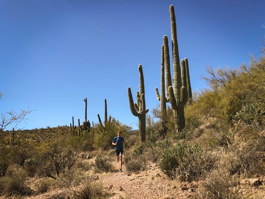 5 Things To Do in Goodyear AZ Tonight